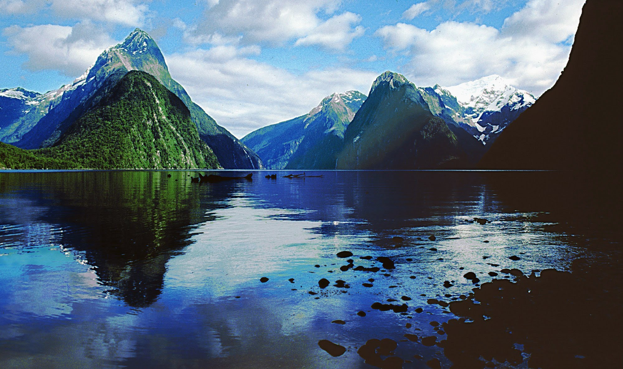 milford-sound-fjords-cruise-and